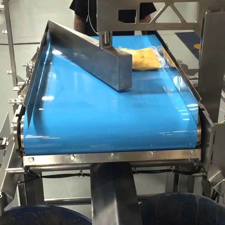 Sanitary Conveyor