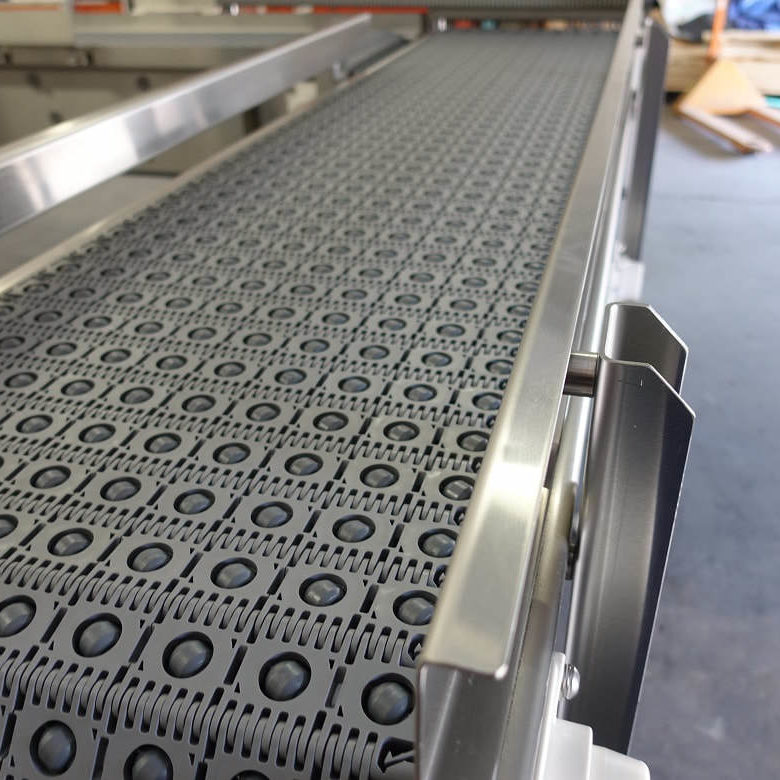 Activated Roller Belt Conveyor